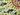 Micro matsuzaki diveintothesun